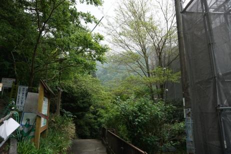 The pathway to Tsuzumigataki Waterfall