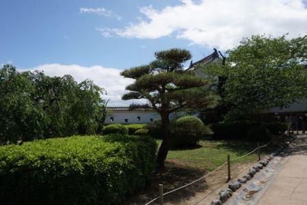 Garden in Himeji Castle
