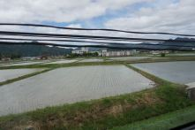 Farmlands in Kansai