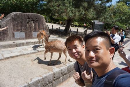 Taking a wefie with deers in front of Todaiji Entrance