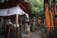 Another cluster of shrines in Mt Inari