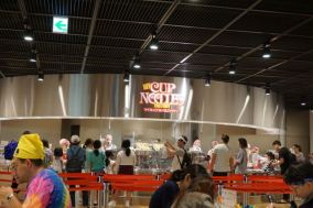 The noodle customisation area
