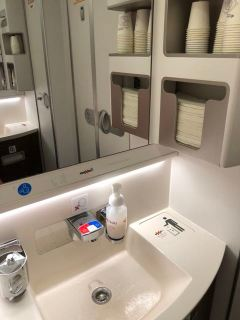 Hand soap and perfume are the only amenities in the Economy Class cabin