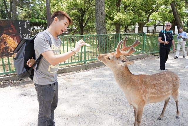 My friend feeding a deer with crackers