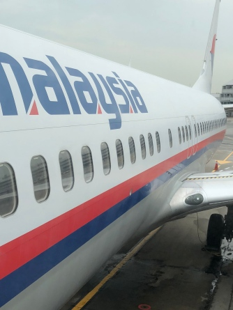 Malaysia Airlines B737-800 close up