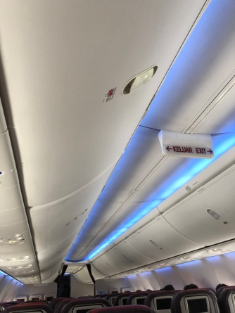 Blue mood lighting used during the flight