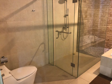 Walk-in shower that comes with rain shower and regular shower head