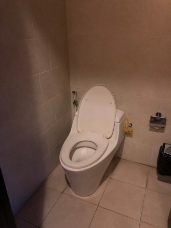 Inside the small toilet