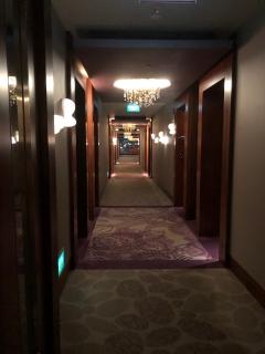 Classy corridor in the hotel