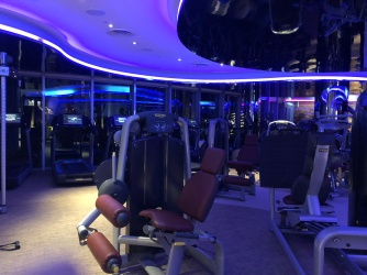 The gym is well equipped with machines that allow guests to have a great workout.