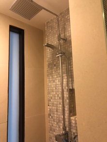 Walk-in shower has rain shower and regular shower head