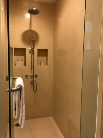 Walk-in shower with rain shower and regular shower head