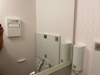 Large mirror in the Economy Class lavatory