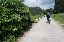 Our guide, Long, leading us in the cycling through the countryside