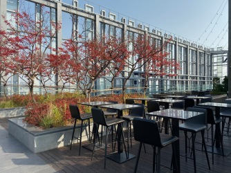 Guests can relax and enjoy the views of Seoul from the rooftop garden