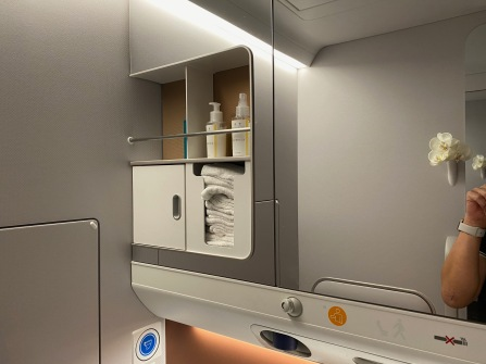 Amenities rack in the lavatory