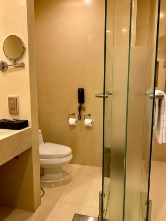 Toilet in the bathroom