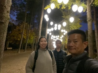 The sun has set and Nami Island lights up