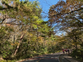 Driving to Yeongsil Trail in Hallasan