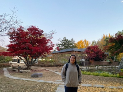 My friend on Nami Island