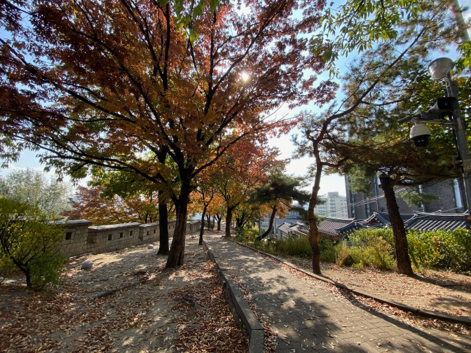 Seoul City Wall in autumn