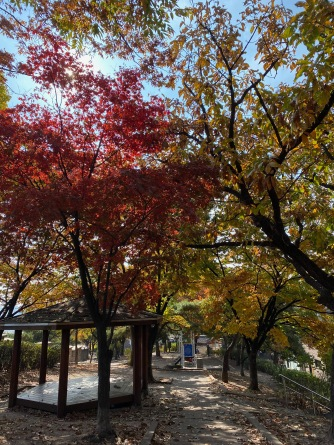 Beautiful autumn scenery along Seoul City Wall